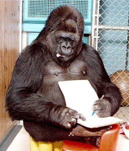 writing apes